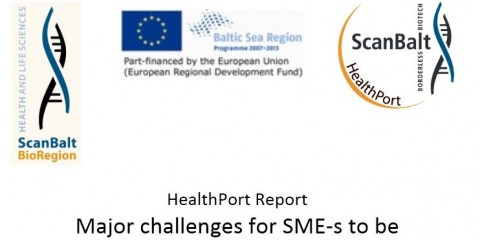 Major Challenges for SMEs to be Commercially Successful